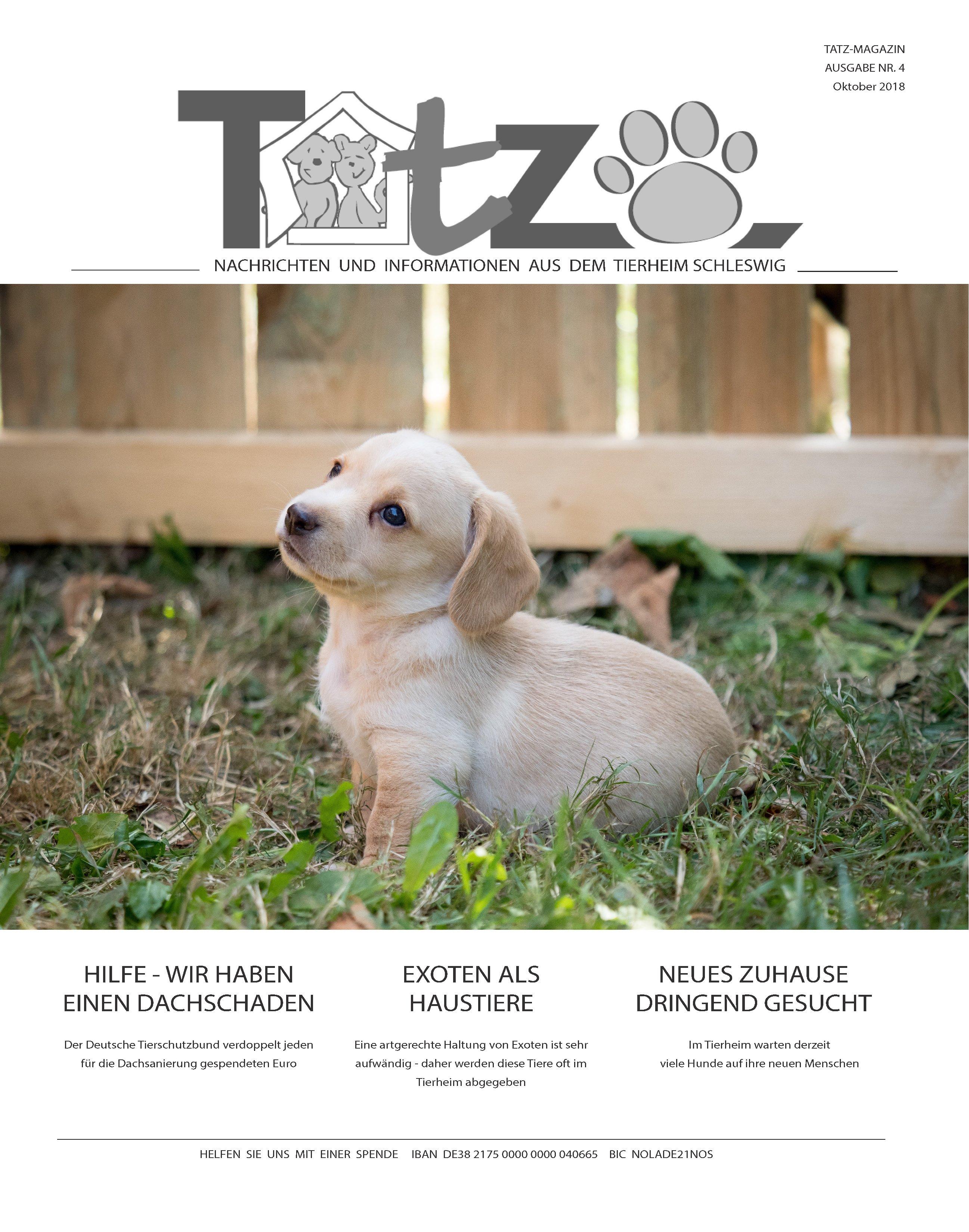 Titelblatt_TATZ_Nr_4